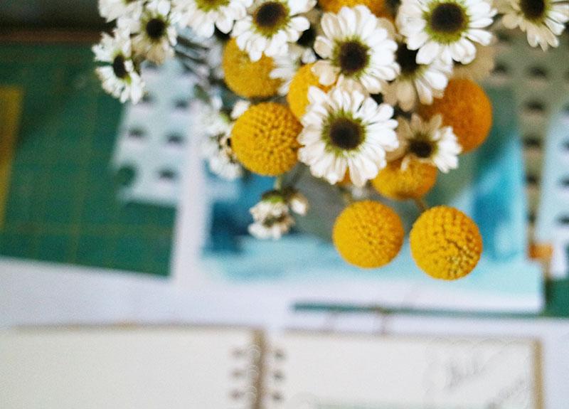 Still Flowers II