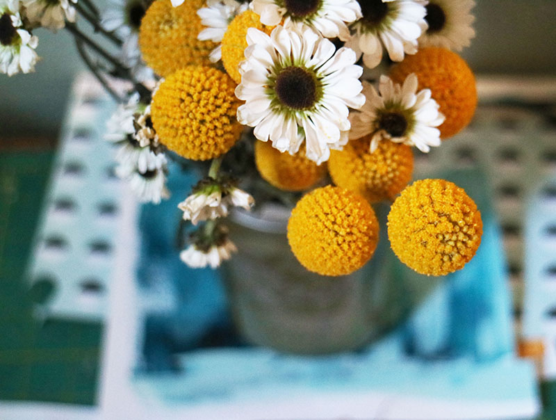 Still Flowers III