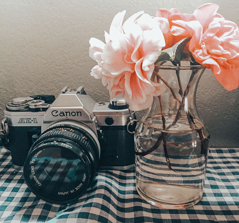 camera + flora